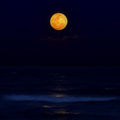 moonthb