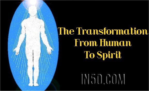 "AFTERLIFE 101: ""The Transformation From Human To Spirit"""