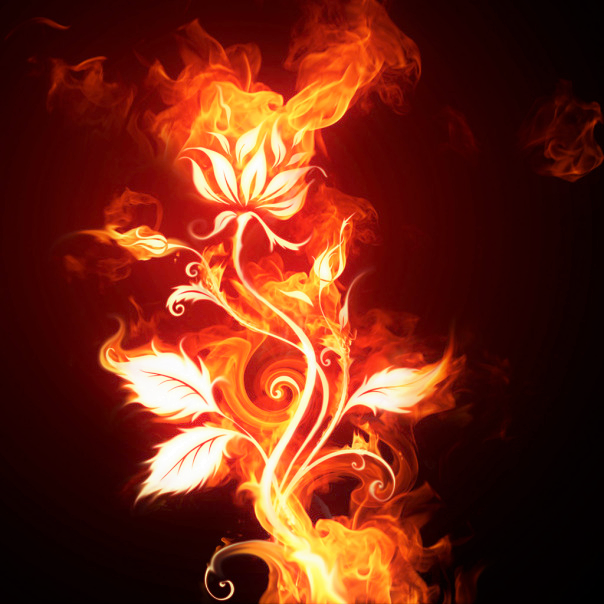 Flower Flame (2).png